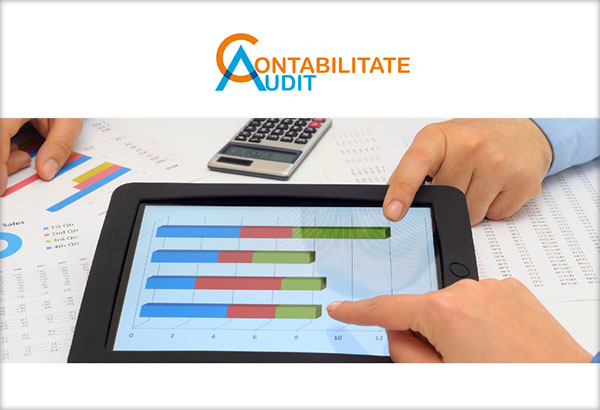 Contabilitate-Audit